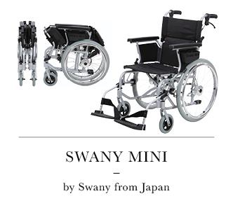20170802-Swanymini