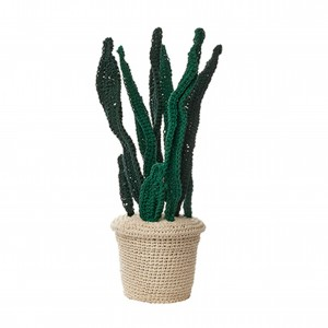 ACP-PLANT